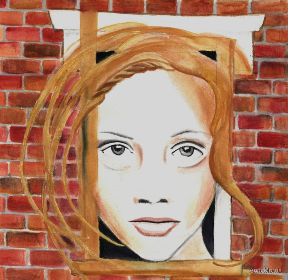 Face in the Wall by Anni Morris