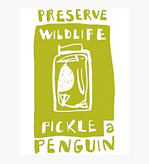 Pickle a Penguin Photographic Print