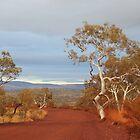 Pilbara / Karijini - the view was like a painting by gaylene