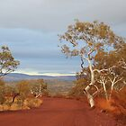 Pilbara / Karijini - the view was like a painting by gaylene