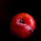 Red Plum #1 by LouiseK