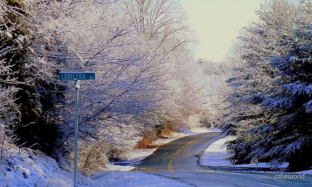 Winter Whirl