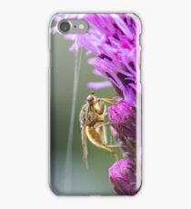Insect on a Purple Flower iPhone Case/Skin