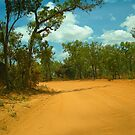 Potholes and Corrugations by V1mage