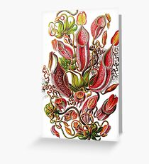 Plants & Animals, carnivorous, pitcher plants, tropical, Nepenthes, psychedelic, art, illustration, haeckel,  Greeting Card