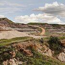 Alberta Badlands by Tracy Friesen