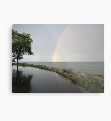Rainbows Metal Print