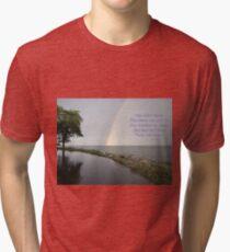 A Song of Rainbows Tri-blend T-Shirt