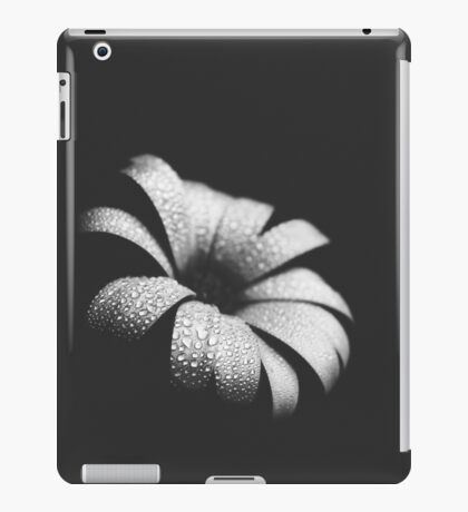 daisy flower iPad Case/Skin