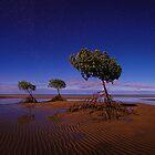 Moonlight Mangroves - Yule Point FNQ by Mark Shean