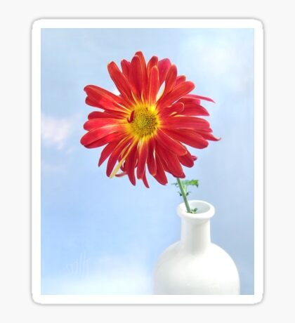 Gerbera Daisy in a White Vase Sticker