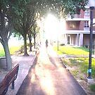 Scenery by ShootThatZombie