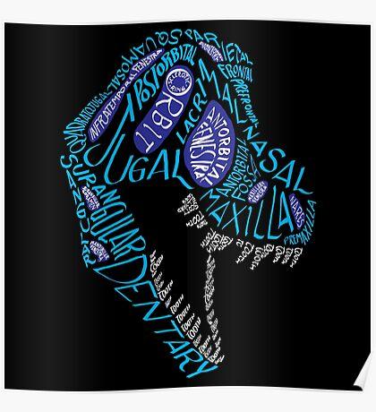 Color Calligram Tyrannosaur Skull Poster