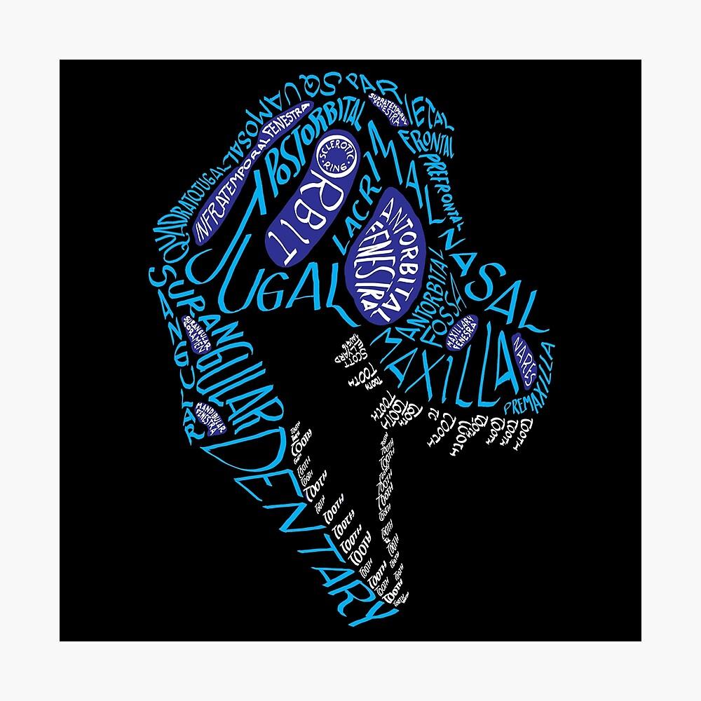Color Calligram Tyrannosaur Skull Photographic Print