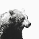 Bear // Calm Sketch von Amy Hamilton