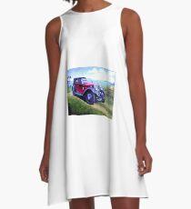 The picnic. A-Line Dress