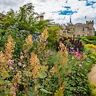 An English Garden by vivsworld