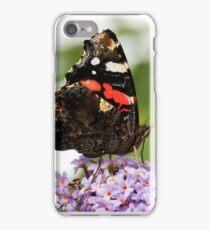 Red Admiral iPhone Case/Skin