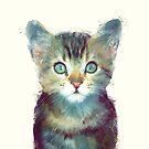 Cat // Aware by Amy Hamilton