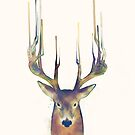 Deer // Steadfast von Amy Hamilton