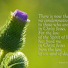 Keine Verurteilung - Freiheit ~ Römer 8: 1,2 von Robin Clifton