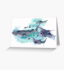 Star Sharks and Rays Greeting Card