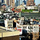 NYC roof tops & water towers by ShellyKay