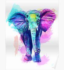 Aquarell Elefant Poster