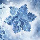 Portrait Of A Snowflake by Stephanie Rachel Seely