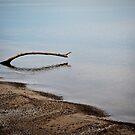 Lake Erie Tranquility 2 by Shawna Rowe