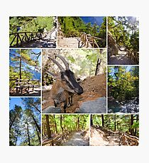 Photo collage of Samaria Gorge images in central Crete, Greece Photographic Print