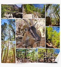 Photo collage of Samaria Gorge images in central Crete, Greece Poster