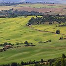 Tuscan View by Barbara  Brown