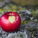 An Apple a Day ... by Johanne Brunet