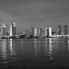 San Diego Night Skyline by Rosalee Lustig