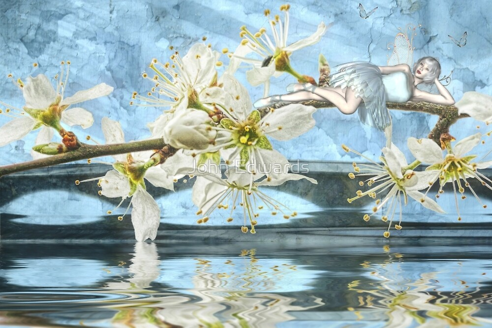 Blossom - another collaboration with Rose Moxon by John Edwards