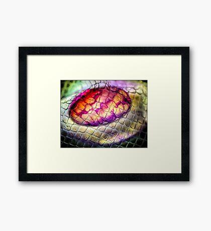 Sheath of Womb Framed Print