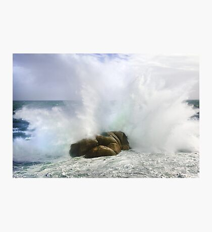 Untamed Forces II Photographic Print