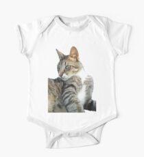 Observant Tabby Cat Vector Kids Clothes