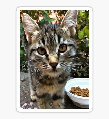 Tabby Cat Kitten Making Eye Contact Sticker