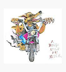A dingo stole my bike RH Photographic Print