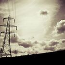 Pylons by Stevie B