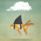 Under a Cloud, Goldfish with a Shark fin by Vin  Zzep