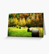 Mississippi HayField Greeting Card