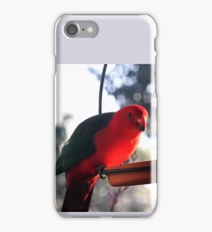Pretty Polly Parrot iPhone Case/Skin