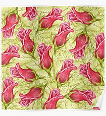 pattern leaves and roses. color pencil Poster