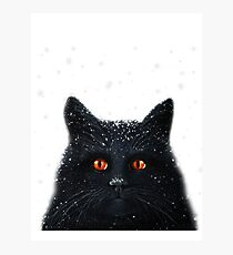 Black Cats Get a Bad Rap - cat art Photographic Print