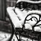 Bench in Snow by Vicki Field