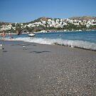 Seagull Beach Greece by Vitta