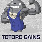 Totoro Gains in a Leotard by McBethAllen